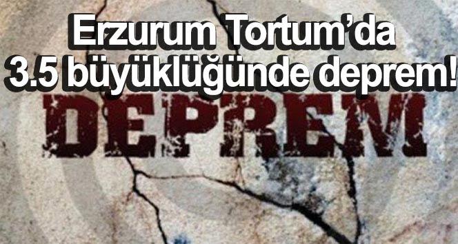 Erzurum'da 3.5 büyüklüğünde deprem!