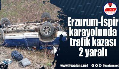 Erzurum-İspir karayolunda trafik kazası 2 yaralı