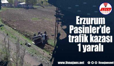 Erzurum Pasinler'de trafik kazası 1 yaralı