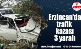 Erzincan'da trafik kazası 3 yaralı