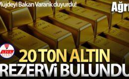 Ağrı'da 1.2 milyar dolarlık altın, 2.8 milyon dolarlık gümüş rezervi bulundu
