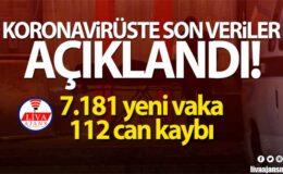 Türkiye'de son 24 saatte 7.181 koronavirüs vakası tespit edildi