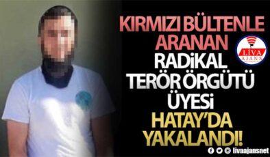 MSB: 'Kırmızı bültenle aranan radikal terör örgütü üyesi Hatay'da yakalandı'