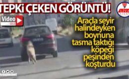Araçla seyir halindeyken boynuna tasma taktığı köpeği peşinden koşturdu