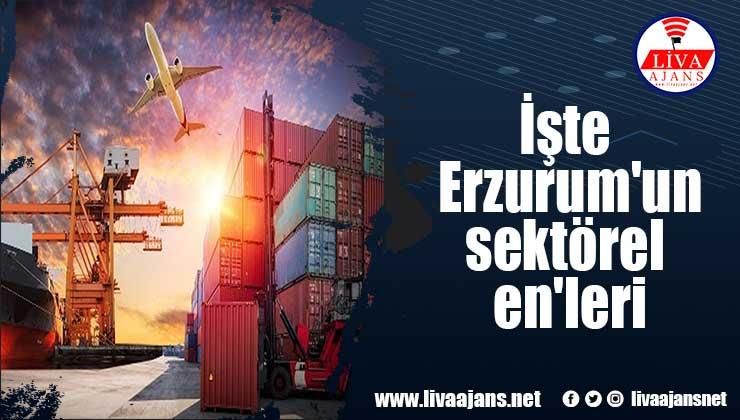 İşte Erzurum'un sektörel en'leri