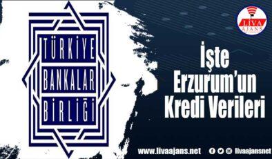 İşte Erzurum'un Kredi Verileri