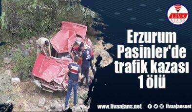 Pasinler'de trafik kazası: 1 ölü